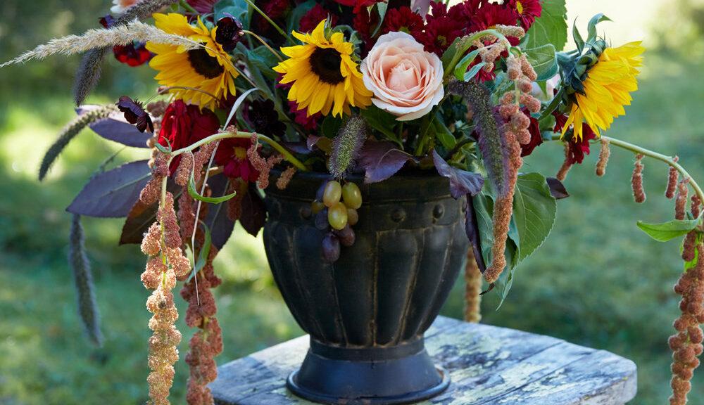 Välkomna till höstens aktiviteter!